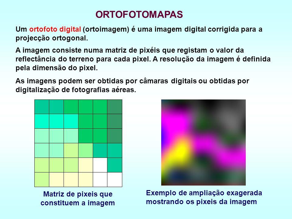 Matriz de pixeis que constituem a imagem