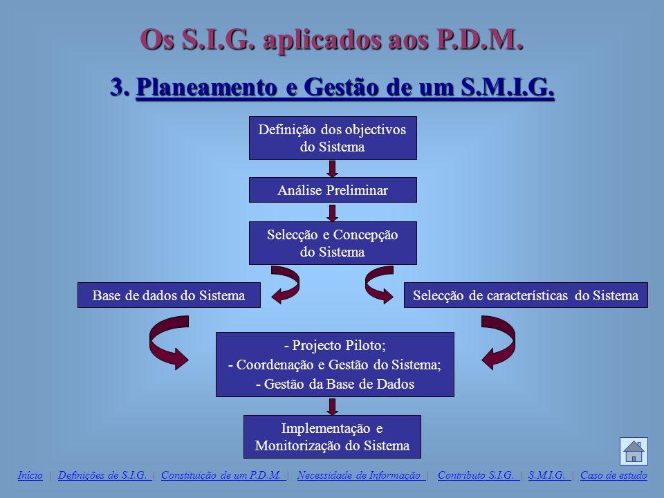 3. Planeamento e Gestão de um S.M.I.G.