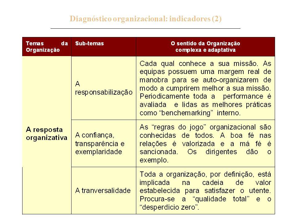 Diagnóstico organizacional: indicadores (2) _____________________________________________________________________________