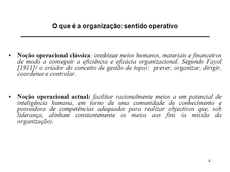 O que é a organização: sentido operativo _____________________________________________________