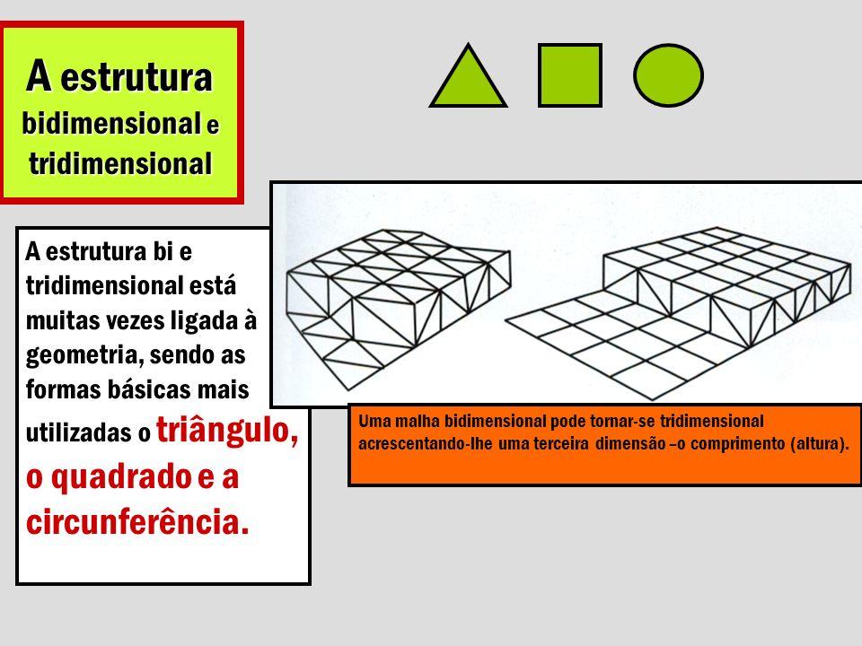 A estrutura bidimensional e tridimensional