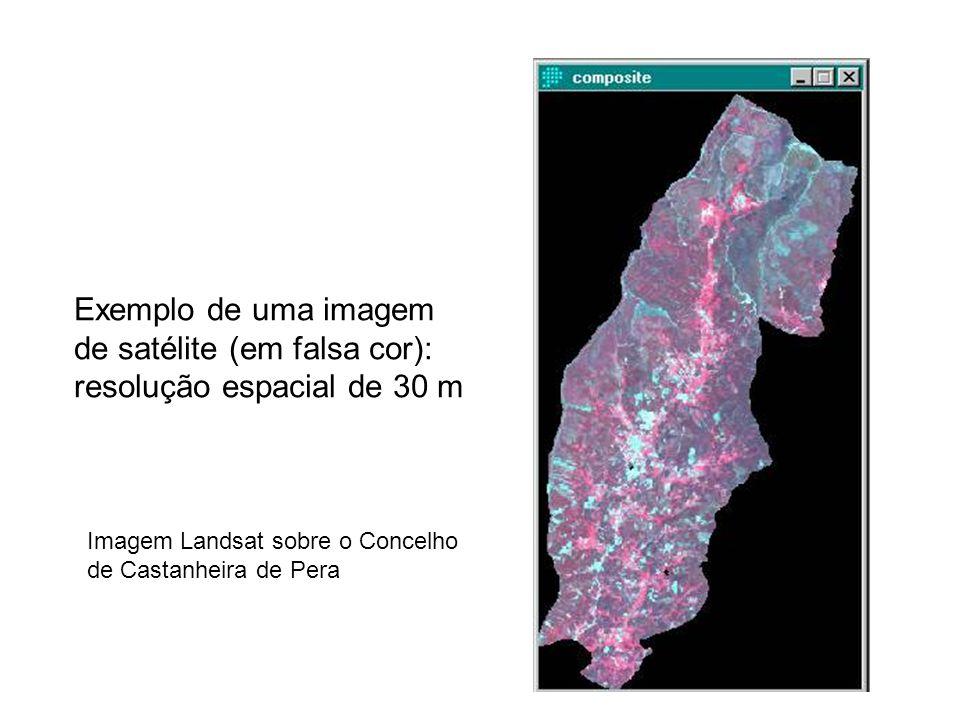 de satélite (em falsa cor): resolução espacial de 30 m