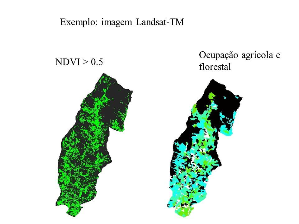Exemplo: imagem Landsat-TM