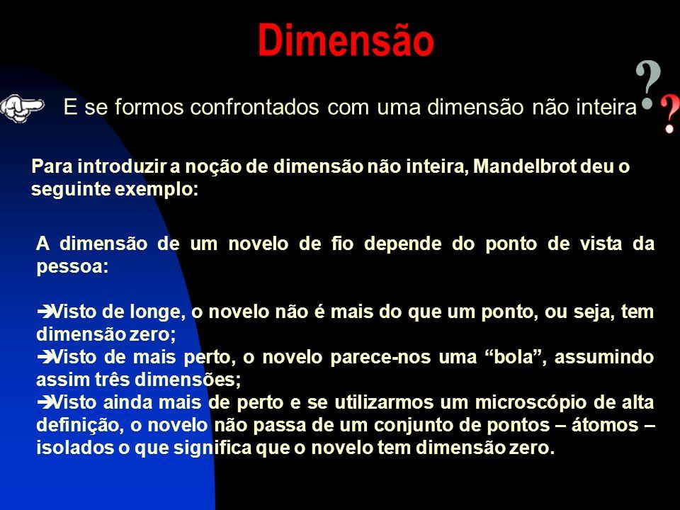 Dimensão E se formos confrontados com uma dimensão não inteira
