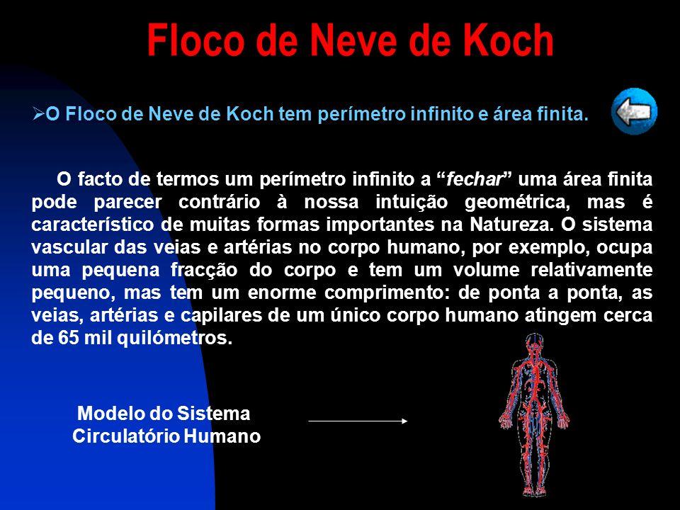 O Floco de Neve de Koch tem perímetro infinito e área finita.