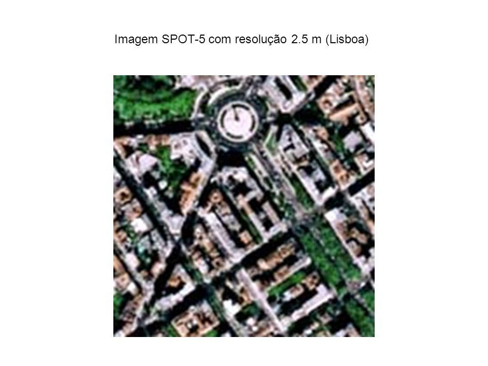 Imagem SPOT-5 com resolução 2.5 m (Lisboa)