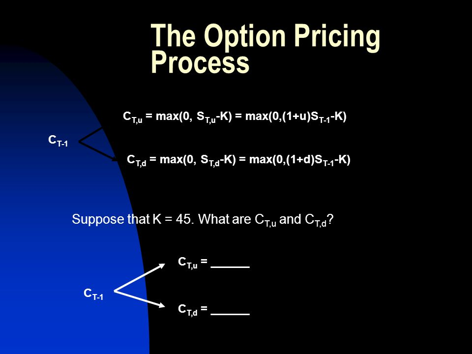 The Option Pricing Process