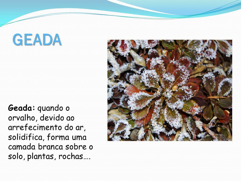 GEADA Geada: quando o orvalho, devido ao arrefecimento do ar, solidifica, forma uma camada branca sobre o solo, plantas, rochas….