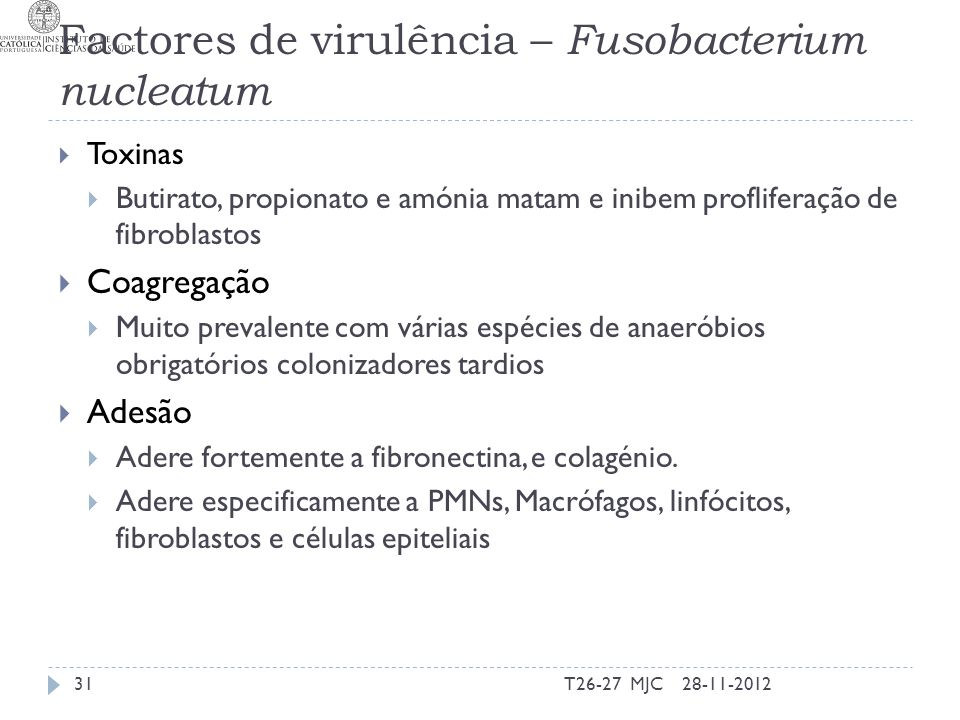 Factores de virulência – Fusobacterium nucleatum