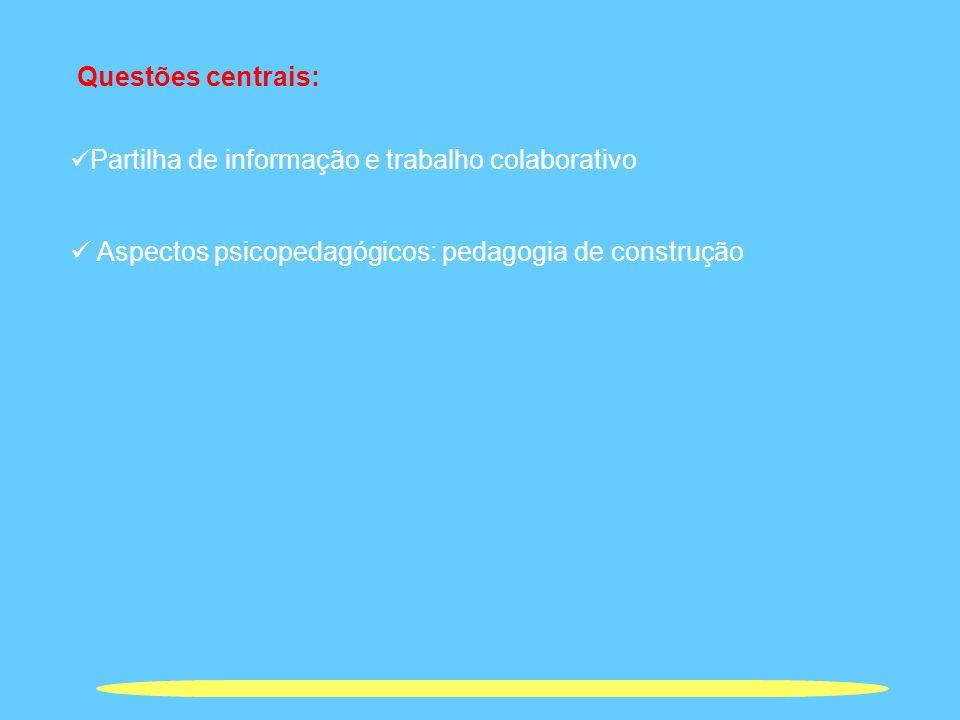 Questões centrais: Partilha de informação e trabalho colaborativo.
