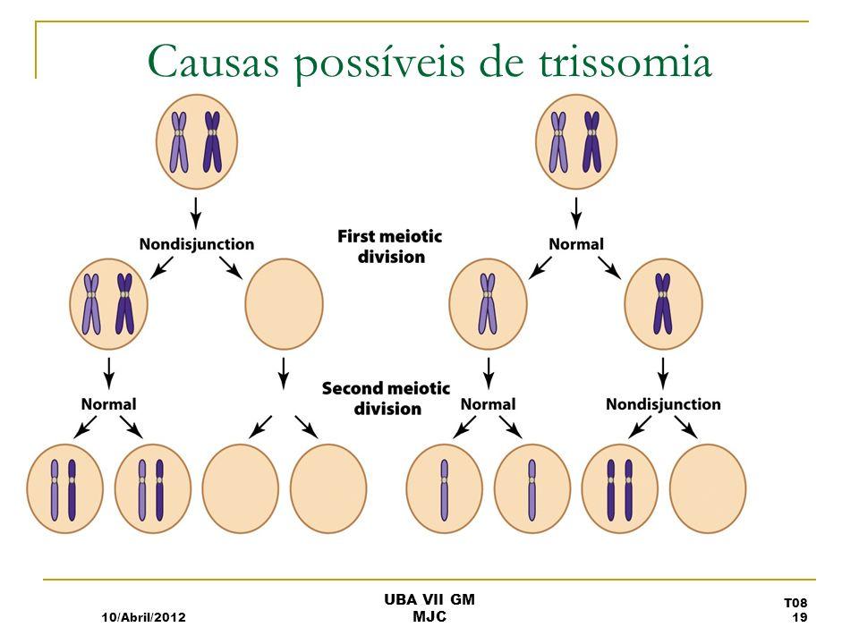 Causas possíveis de trissomia