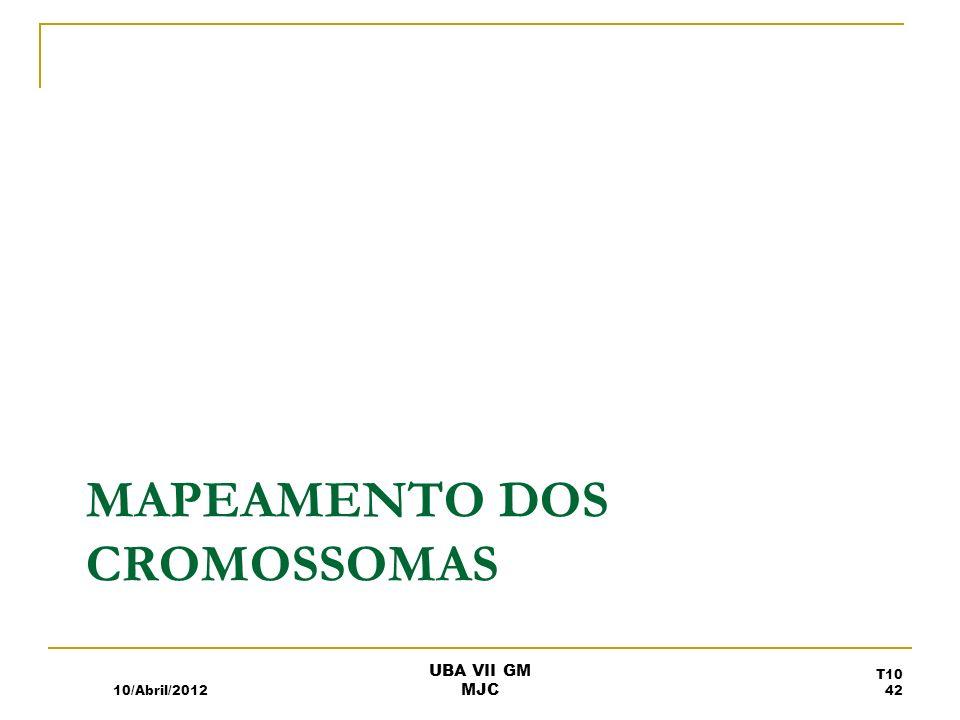Mapeamento dos Cromossomas
