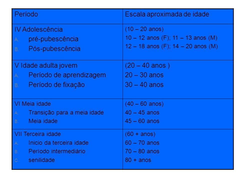 Escala aproximada de idade IV Adolescência pré-pubescência