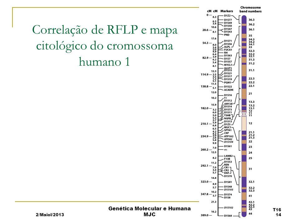 Correlação de RFLP e mapa citológico do cromossoma humano 1