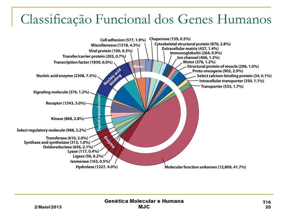 Classificação Funcional dos Genes Humanos