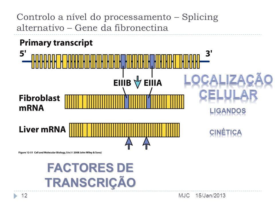 FACTORES DE TRANSCRIÇÃO