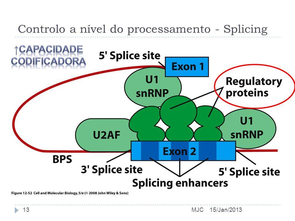 Controlo a nível do processamento - Splicing