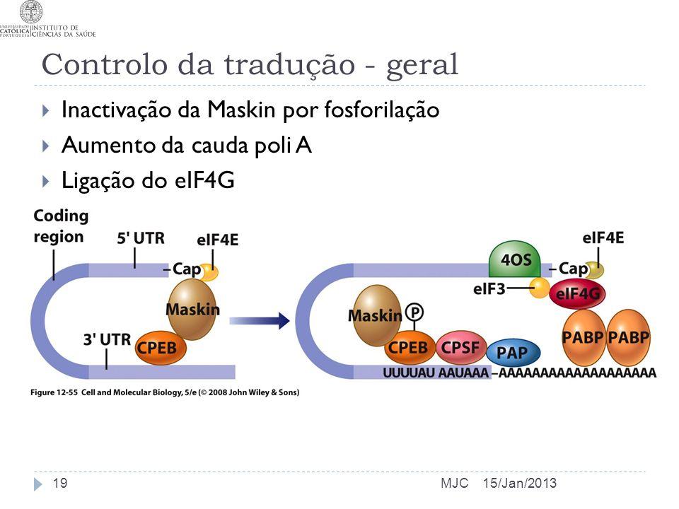 Controlo da tradução - geral