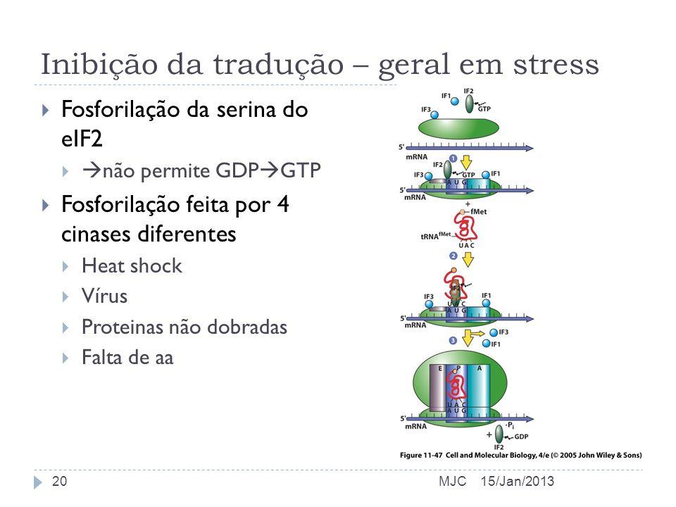 Inibição da tradução – geral em stress