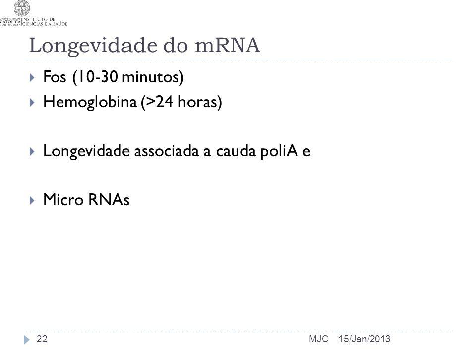 Longevidade do mRNA Fos (10-30 minutos) Hemoglobina (>24 horas)