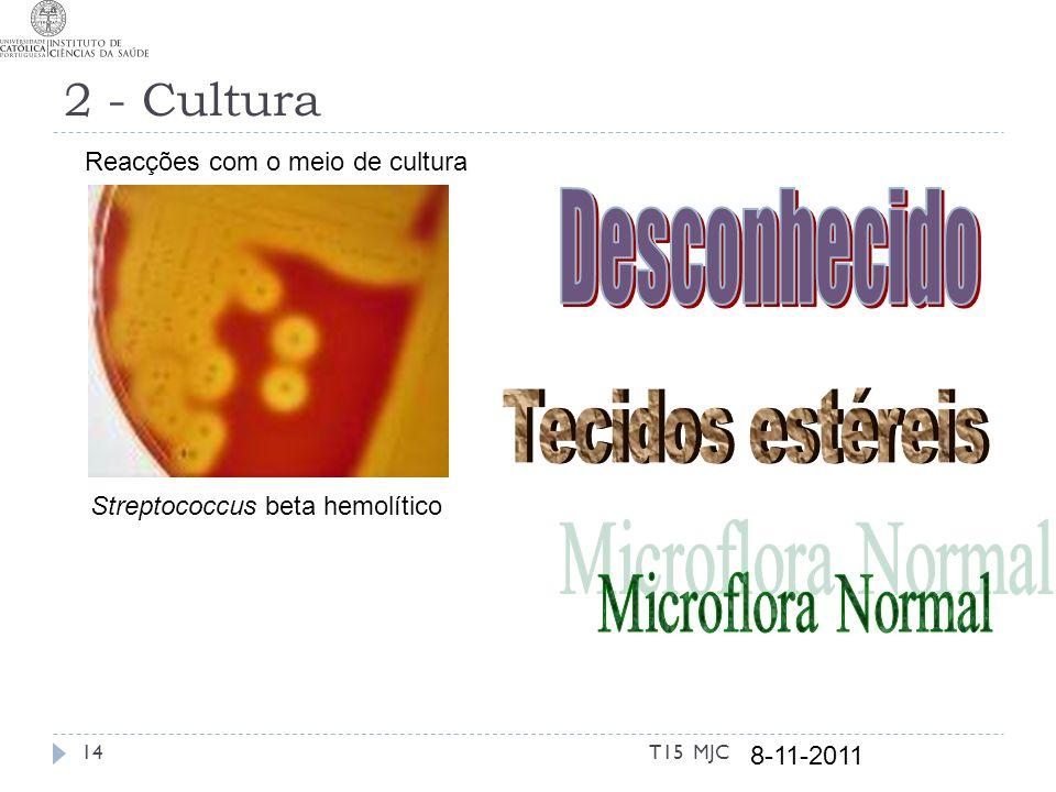 Desconhecido Tecidos estéreis Microflora Normal 2 - Cultura
