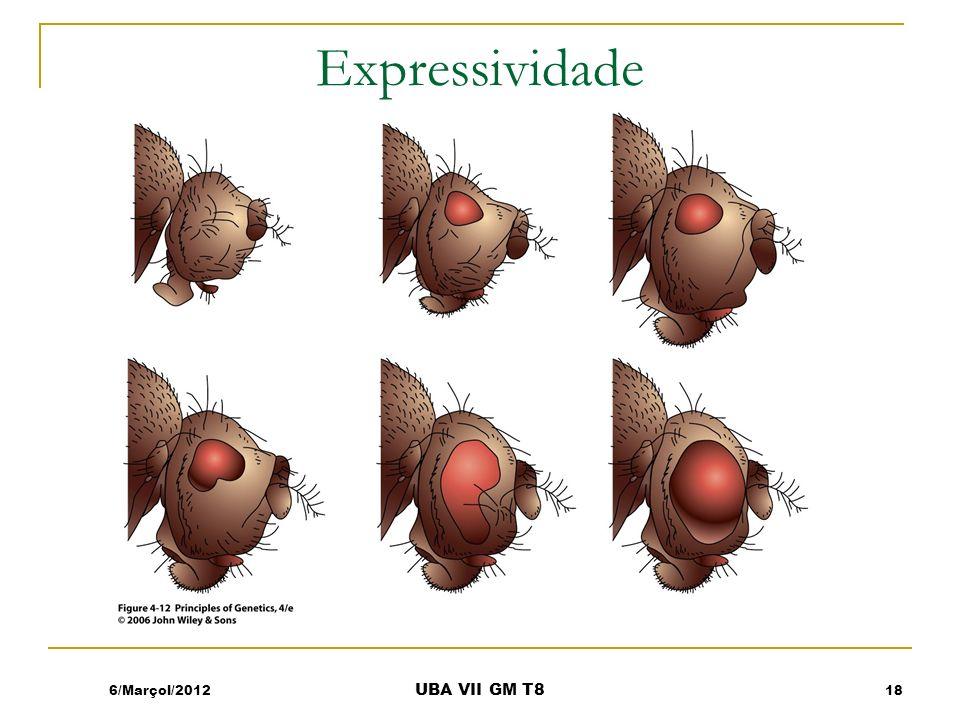 Expressividade 6/Marçol/2012 UBA VII GM T8