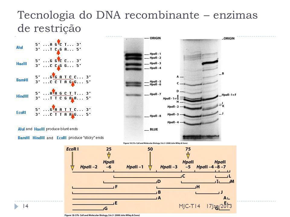 Tecnologia do DNA recombinante – enzimas de restrição