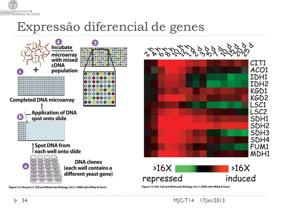 Expressão diferencial de genes