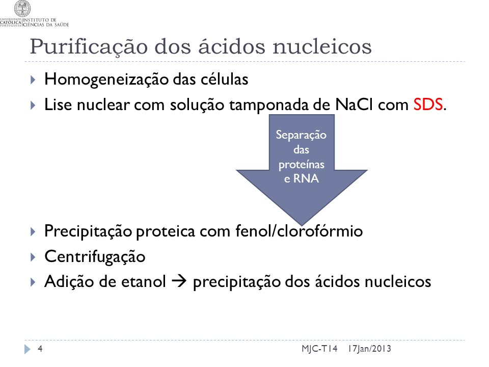 Purificação dos ácidos nucleicos