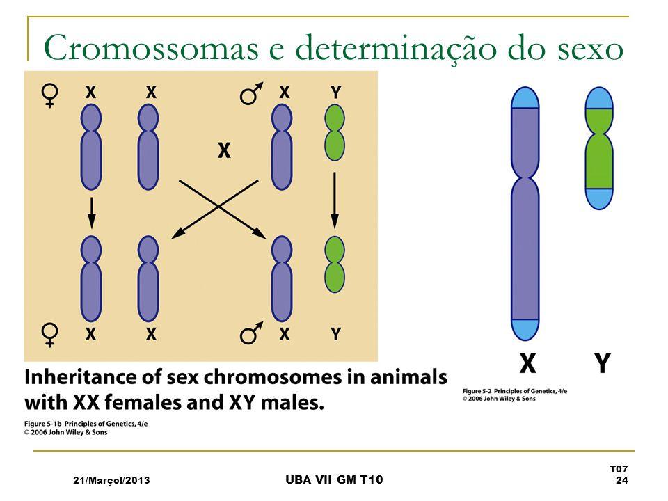 Cromossomas e determinação do sexo