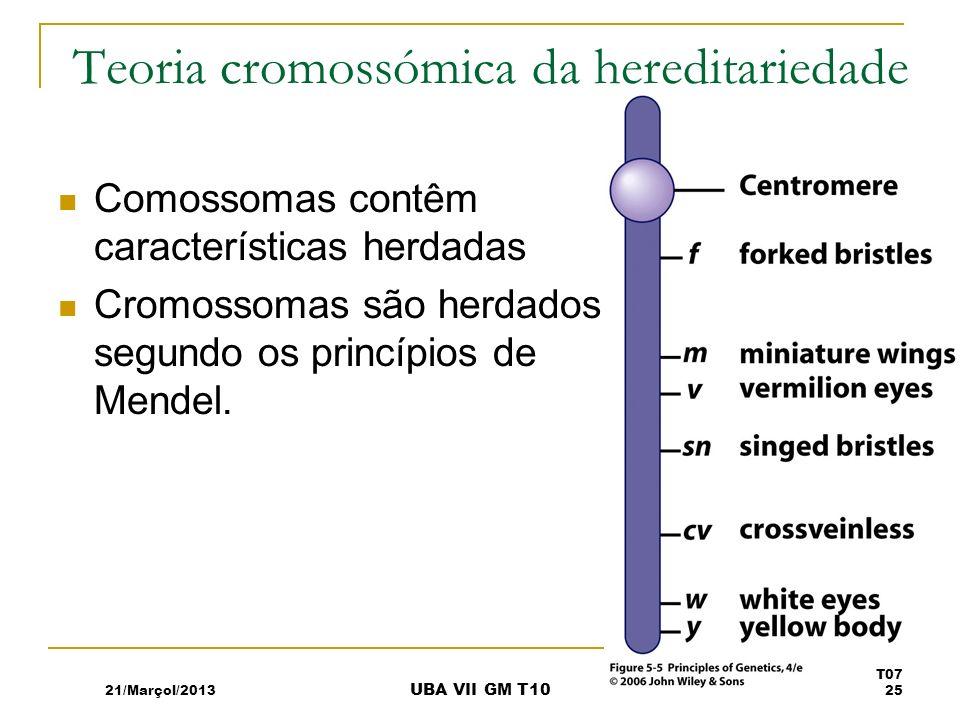Teoria cromossómica da hereditariedade