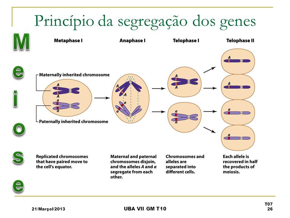 Princípio da segregação dos genes