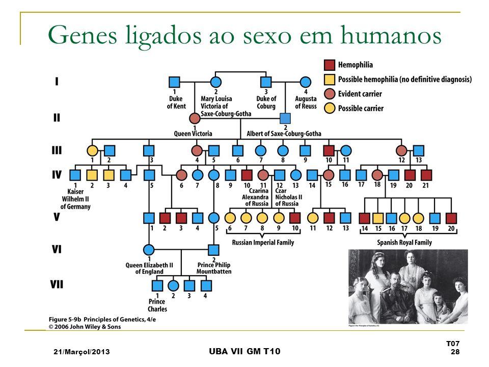 Genes ligados ao sexo em humanos