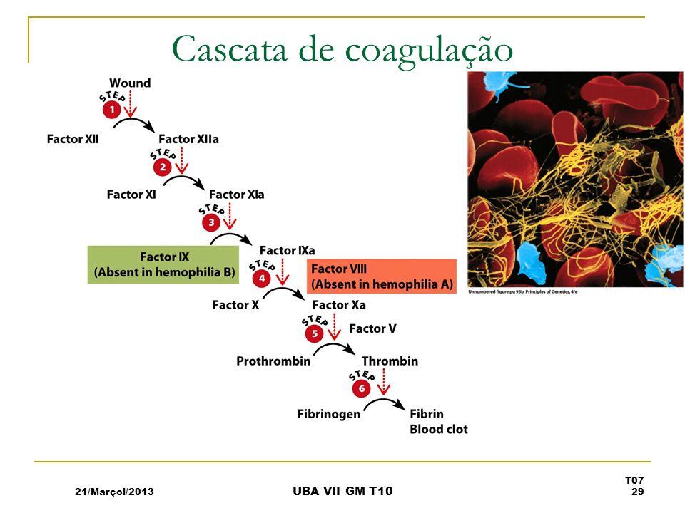 Cascata de coagulação 21/Marçol/2013 UBA VII GM T10