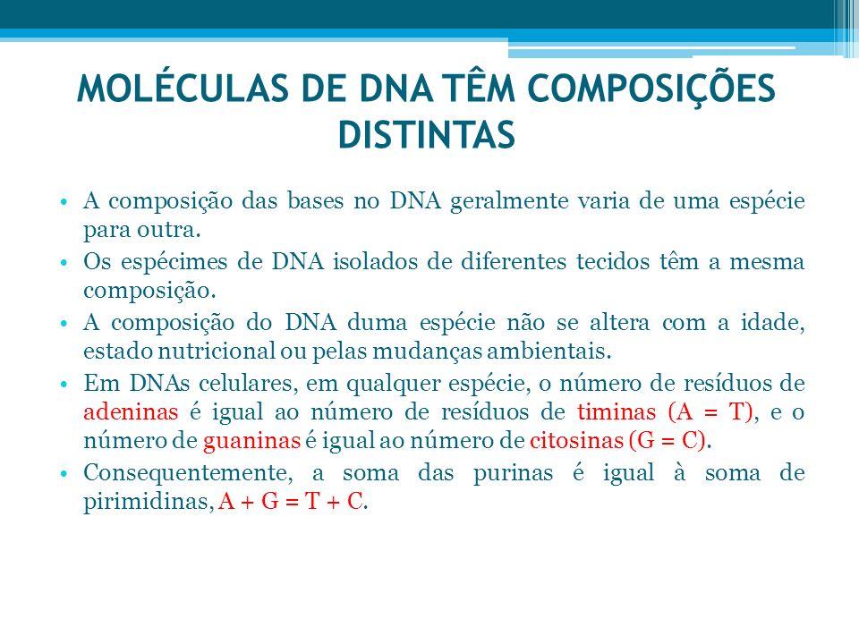 MOLÉCULAS DE DNA TÊM COMPOSIÇÕES DISTINTAS