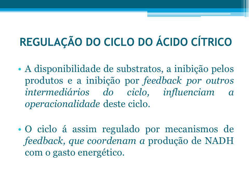 REGULAÇÃO DO CICLO DO ÁCIDO CÍTRICO
