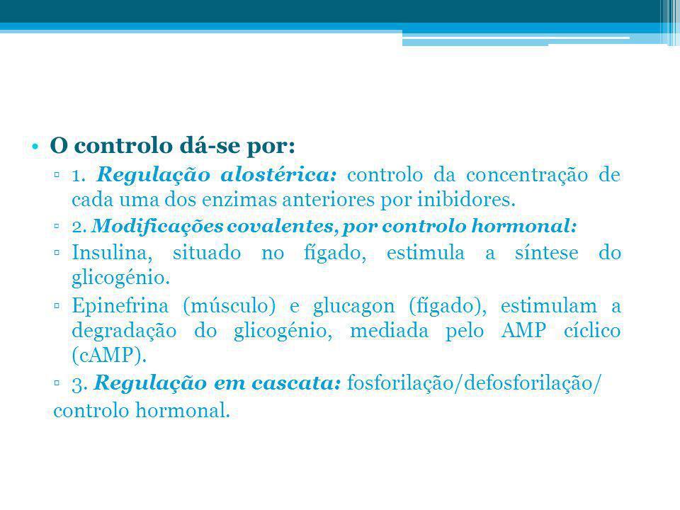 O controlo dá-se por: 1. Regulação alostérica: controlo da concentração de cada uma dos enzimas anteriores por inibidores.