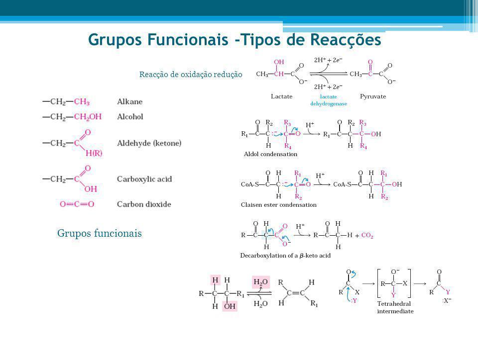 Grupos Funcionais -Tipos de Reacções
