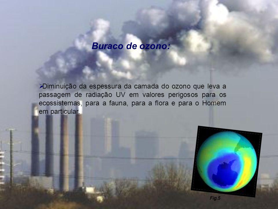 Buraco de ozono: