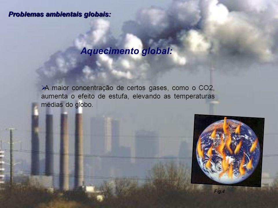Problemas ambientais globais: