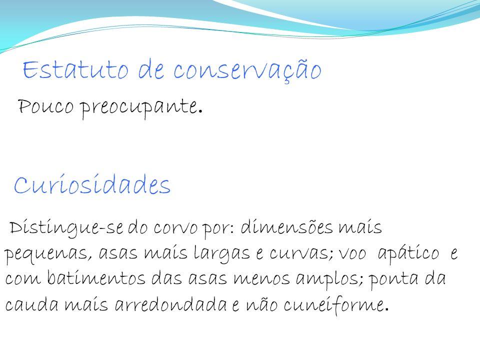 Estatuto de conservação