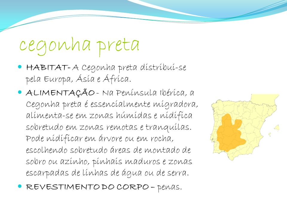 cegonha preta HABITAT- A Cegonha preta distribui-se pela Europa, Ásia e África.