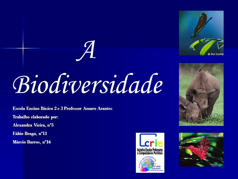 A Biodiversidade Escola Ensino Básico 2 e 3 Professor Amaro Arantes