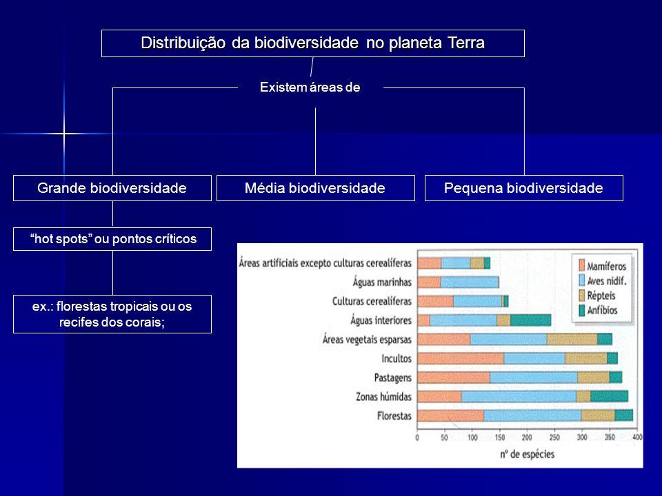Distribuição da biodiversidade no planeta Terra