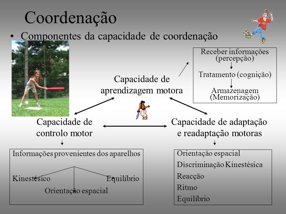 Coordenação Componentes da capacidade de coordenação