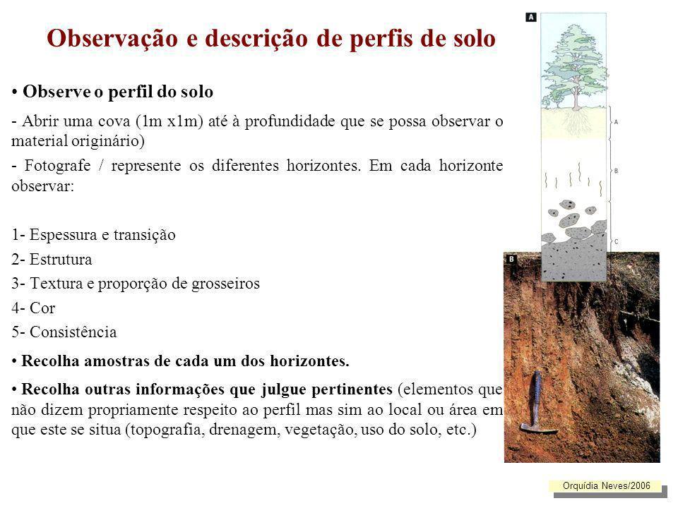 Observação e descrição de perfis de solo