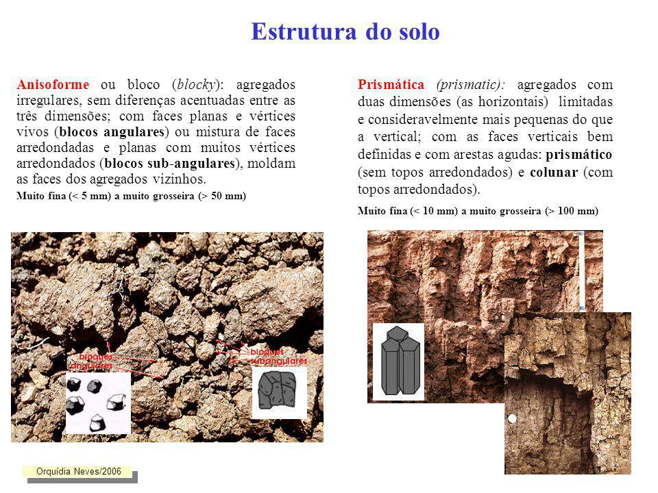 Estrutura do solo