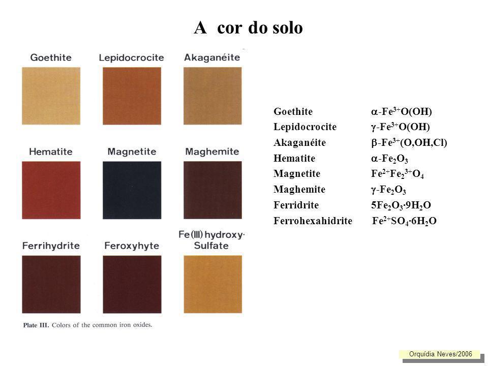 A cor do solo Goethite -Fe3+O(OH) Lepidocrocite -Fe3+O(OH)