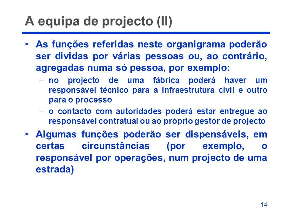 A equipa de projecto (II)