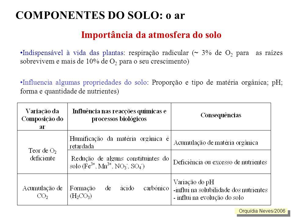COMPONENTES DO SOLO: o ar